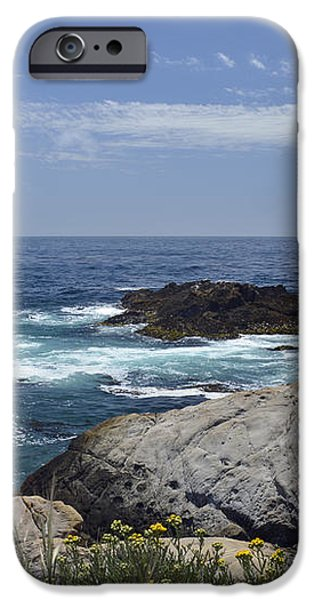Coastline and Flowers in California's Point Lobos State Natural Reserve iPhone Case by Bruce Gourley