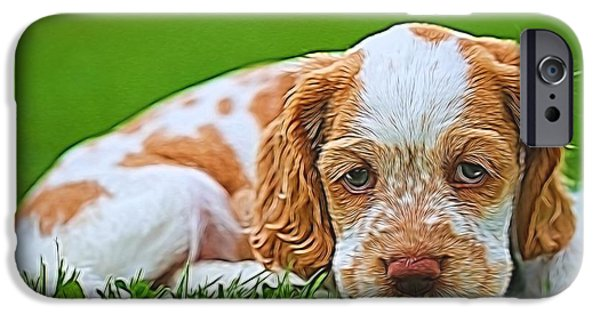 Cute Puppy iPhone Cases - Cocker Spaniel Puppy In Grass iPhone Case by Dan Sproul