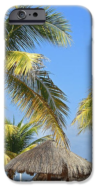Coconut Palm Forest iPhone Case by Charline Xia