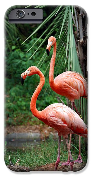 CODE PINK iPhone Case by Skip Willits