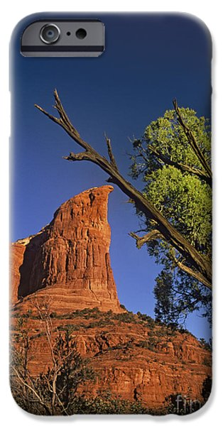 Best Sellers -  - Slickrock iPhone Cases - Coffee Pot Rock And Juniper Sedona Arizona iPhone Case by Dave Welling