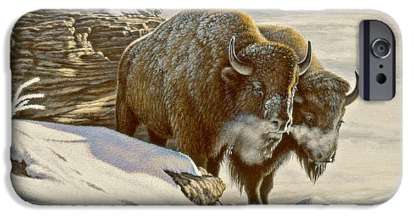Bison iPhone Cases - Cold day at Soda Butte iPhone Case by Paul Krapf