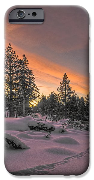 Snow Scene iPhone Cases - Cold Morning iPhone Case by Maria Coulson