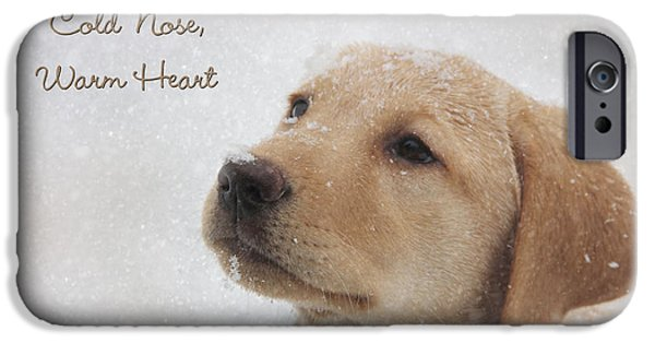 Best Sellers -  - Cute Puppy iPhone Cases - Cold Nose Warm Heart iPhone Case by Lori Deiter