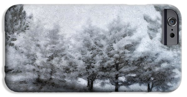 Wintertime iPhone Cases - Cold Spell iPhone Case by Ellen Heaverlo