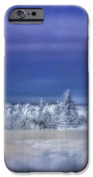 Wintertime Digital Art iPhone Cases - Cold Winter Day iPhone Case by Ellen Heaverlo