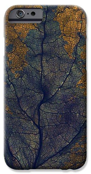 Textile Photographs iPhone Cases - Coleus Window iPhone Case by Julia McLemore