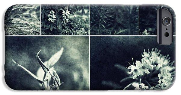 Close Up Floral iPhone Cases - Yukon Wild flower Collage iPhone Case by Priska Wettstein