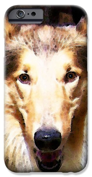 Collie Dog Art - Sunshine iPhone Case by Sharon Cummings