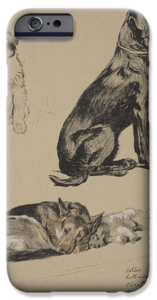 Black Dog iPhone Cases - Collie, Retriever, Alstian And Keeshund iPhone Case by Cecil Charles Windsor Aldin