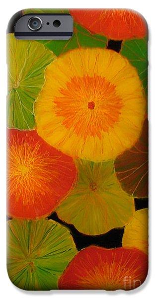 Paint Glass Art iPhone Cases - Color Splash 5 iPhone Case by Anna Skaradzinska