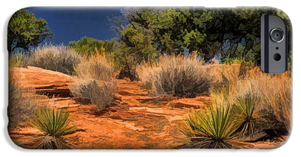 Flora iPhone Cases - Colorado National Monument Desert Flora Panorama iPhone Case by Christopher Arndt