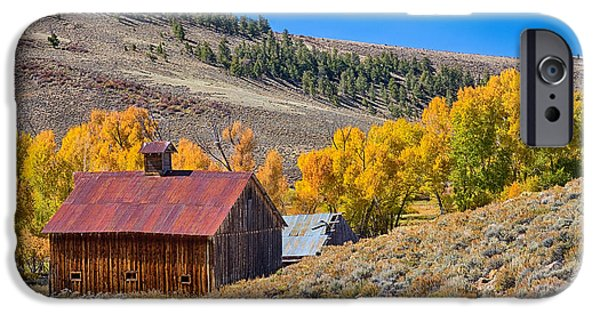 Old Barns iPhone Cases - Colorado Rustic Rural Barn with Autumn Colors  iPhone Case by James BO  Insogna