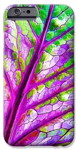 Close Up Floral iPhone Cases - Colorful Coleus Leaf Abstract 1 iPhone Case by Bill Caldwell -        ABeautifulSky Photography