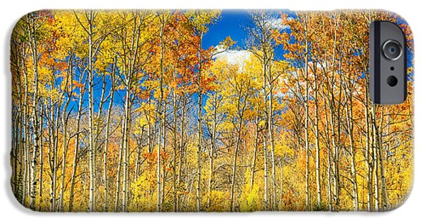 Corporate Art Photographs iPhone Cases - Colorful Colorado Autumn Aspen Trees iPhone Case by James BO  Insogna