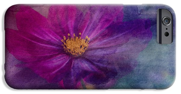 Fauna iPhone Cases - Colorful Cosmos iPhone Case by Arlene Carmel