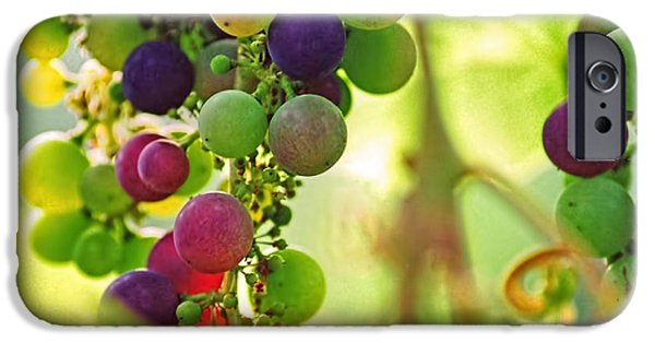Concord Grapes iPhone Cases - Colorful Grapes iPhone Case by Peggy Collins