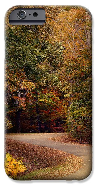 Autumn Scenes iPhone Cases - Colorful Journey - Autumn Scene iPhone Case by Jai Johnson