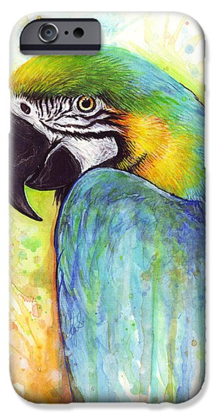 Colorful Birds iPhone Cases - Colorful Macaw Parrot Painting iPhone Case by Olga Shvartsur
