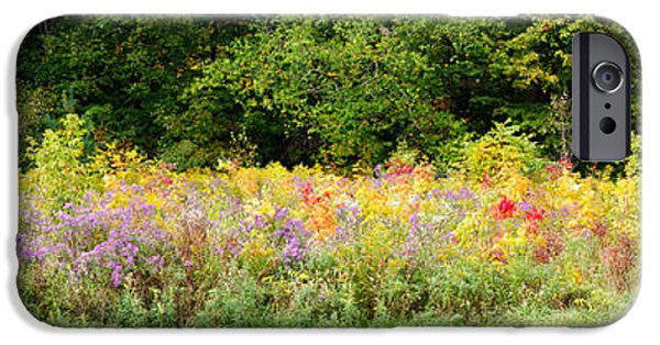 Meadow Photographs iPhone Cases - Colorful Meadow With Wild Flowers iPhone Case by Panoramic Images