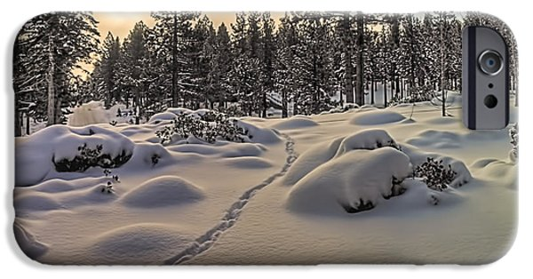 Snow Scene iPhone Cases - Morning Tracks iPhone Case by Maria Coulson
