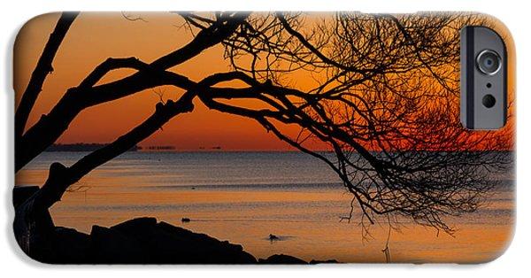 Willow Lake iPhone Cases - Colorful Quiet Sunrise on Lake Ontario in Toronto iPhone Case by Georgia Mizuleva