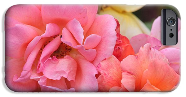 iPhone Cases - Colorful Roses iPhone Case by Carol Groenen