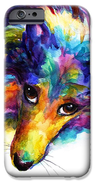 Cute Puppy iPhone Cases - Colorful Sheltie Dog portrait iPhone Case by Svetlana Novikova