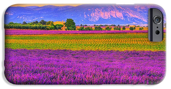 Provence Photographs iPhone Cases - Colors of Provence iPhone Case by Midori Chan