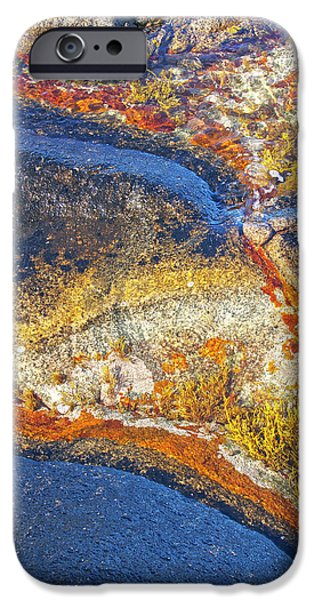 Colors on rock I iPhone Case by Heiko Koehrer-Wagner