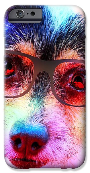 Puppy Iphone Case iPhone Cases - Colourful Dog In Glasses  iPhone Case by Naomi Burgess