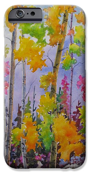 Park Scene Paintings iPhone Cases - Colours Of Fall iPhone Case by Mohamed Hirji