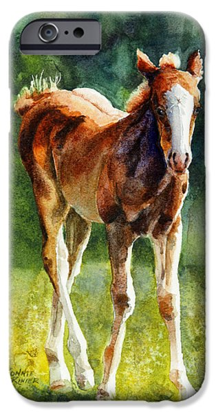 Filly iPhone Cases - Colt in Green Pastures iPhone Case by Bonnie Rinier