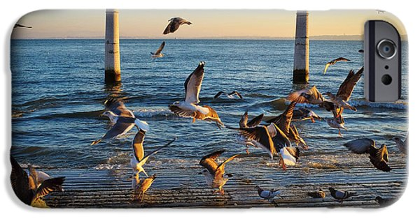 Two Waves iPhone Cases - Columns Dock in Lisbon iPhone Case by Carlos Caetano