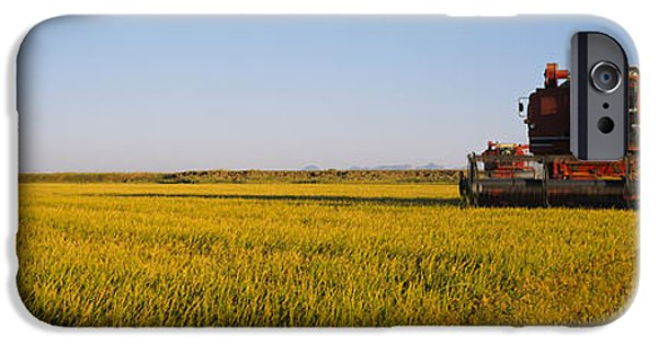 Combine iPhone Cases - Combine In A Rice Field, Glenn County iPhone Case by Panoramic Images