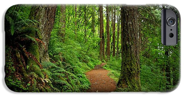 Pathway iPhone Cases - Come along with me iPhone Case by Lynn Hopwood