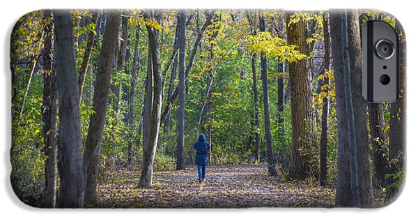 Pathway iPhone Cases - Come For a Walk iPhone Case by Sebastian Musial