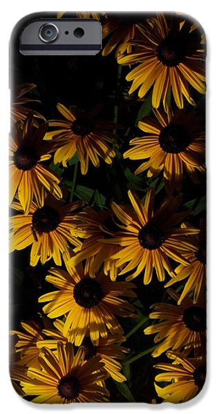Guy Ricketts Photography iPhone Cases - Come Little Children iPhone Case by Guy Ricketts