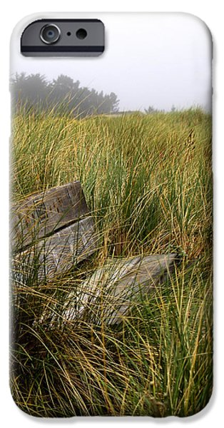Bodega Bay iPhone Cases - Come Sit and Stay iPhone Case by Bill Gallagher
