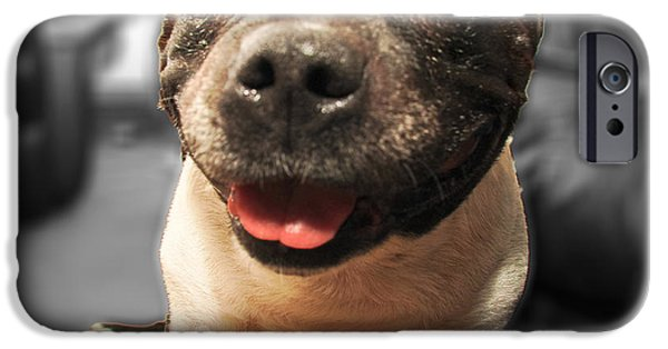 Dog Close-up Digital Art iPhone Cases - Comedy Dog iPhone Case by Paul Moore