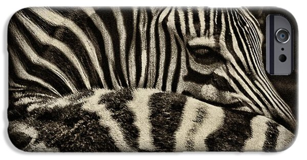 Stripes iPhone Cases - Comfort iPhone Case by Andrew Paranavitana