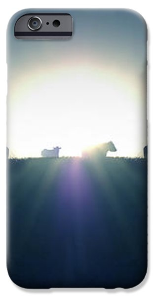 Coming Home iPhone Case by Mike McGlothlen