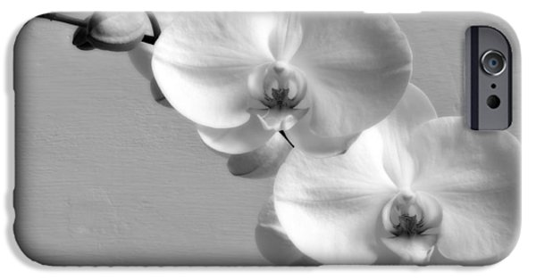 White Orchid iPhone Cases - Commitment iPhone Case by Wim Lanclus