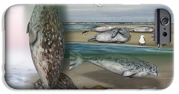 North Sea Drawings iPhone Cases - Common Seal - Harbour Seal - Harbor Seal - Habitat - Nature Interpretive Panel - Zoo Tafel  iPhone Case by Urft Valley Art