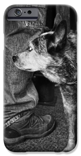 Puppy Love Framed Prints iPhone Cases - Companion iPhone Case by Kelly Hazel