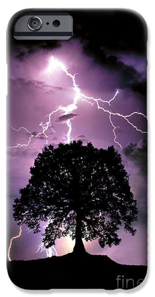 Lightning Bolts iPhone Cases - Composite Of Lightning Hitting A Tree iPhone Case by Mike Agliolo