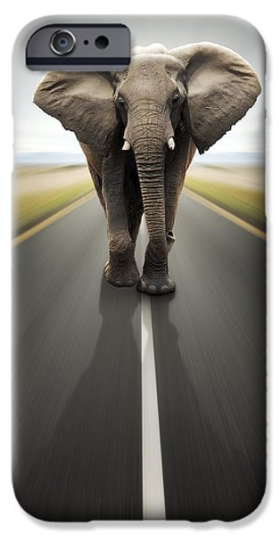 Elephants Photographs iPhone Cases - Conceptual - Heavy duty transport / travel by road iPhone Case by Johan Swanepoel