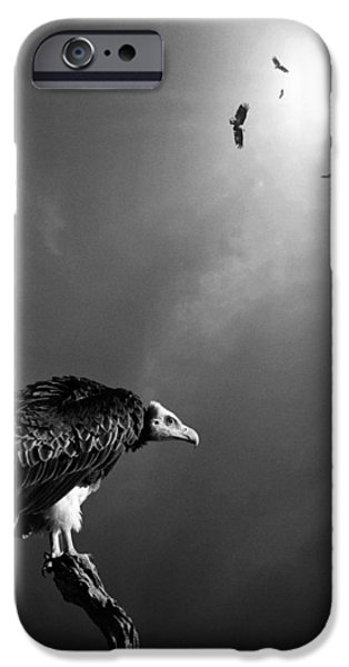Flight iPhone Cases - Conceptual - Vultures awaiting iPhone Case by Johan Swanepoel