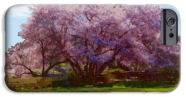 Concord Digital Art iPhone Cases - Concord Spring iPhone Case by John Feiser