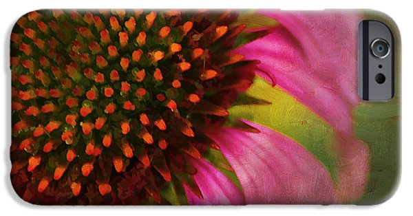 Abstracted Coneflowers iPhone Cases - Coneflower iPhone Case by Darren Fisher